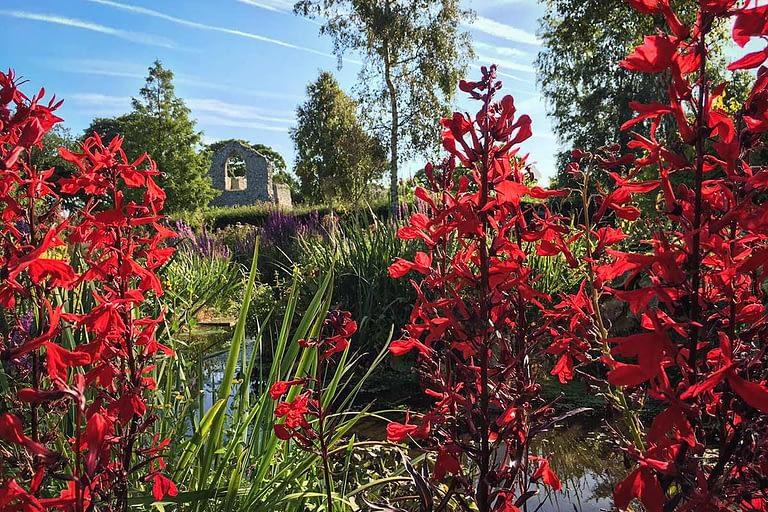 Priory Maze Meadow Stream Garden