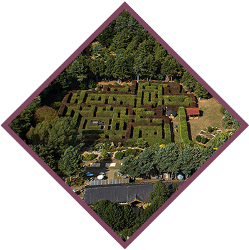 Priory Maze from above